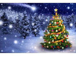 Weihnachtsgruß 2014